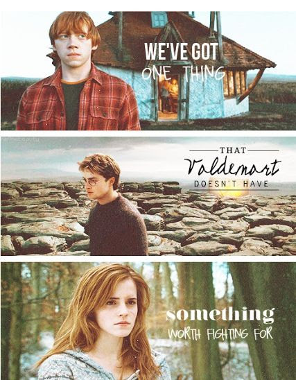 """""""We've got one thing that Voldemort doesn't have something worth fighting for."""" - Harry Potter"""