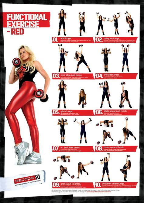 functional dumbbell exercises workout chart gym workout