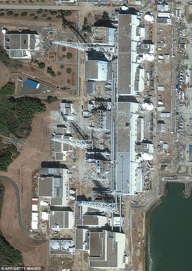 Stricken: Four of the reactors at the Fukushima Dai-ichi plant are overheating. Experts said even if the coolers were too badly damaged, having power would help with pumping water into the reactors