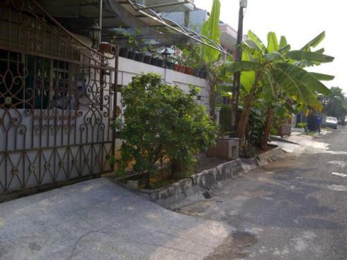 740+ Gambar Rumah Taman Modern Cakung Gratis