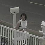 Woman sought in vandalism of Buddhist temple