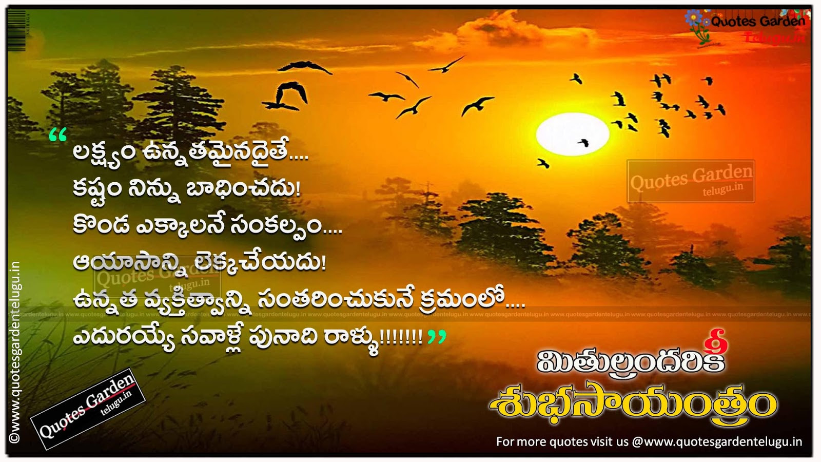 Hd Wallpapers Telugu Quotes Telugu Good Evening Quotes With Hd