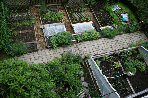 Skippys Vegetable Garden Arial View