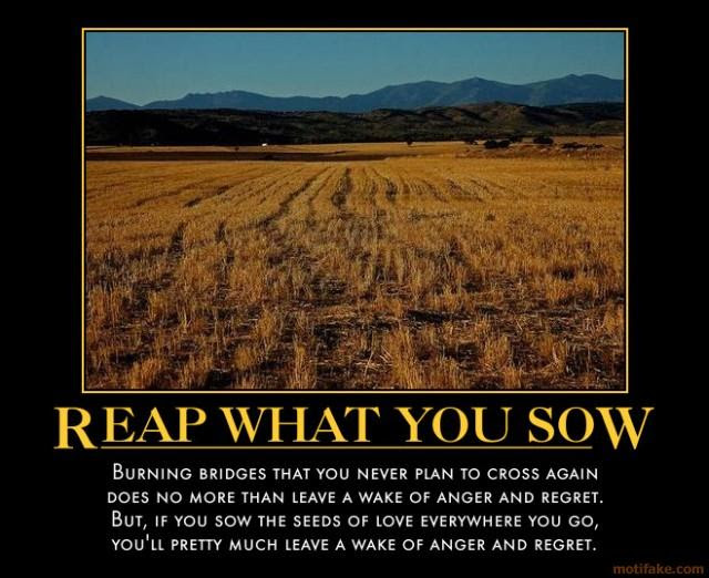 Story As You Sow As You Reap