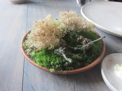 Noma - Copenhagen - August 2012 - Sauteed Raindeer Moss with Mushroom Powder
