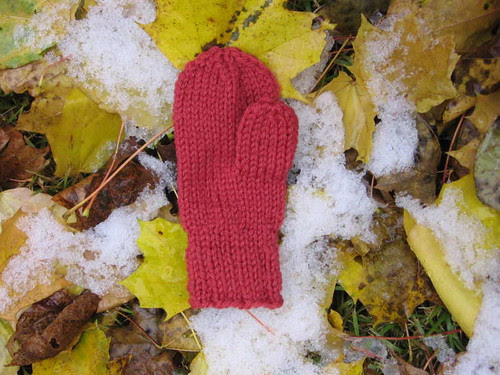 Mitten on snow