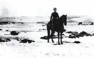 horse000.jpg