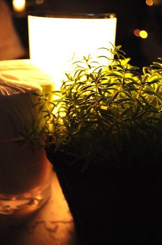 pot of greens