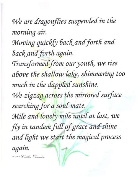 dragonfly poems  quotes quotesgram