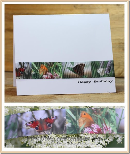 hello wednesday butterfly card