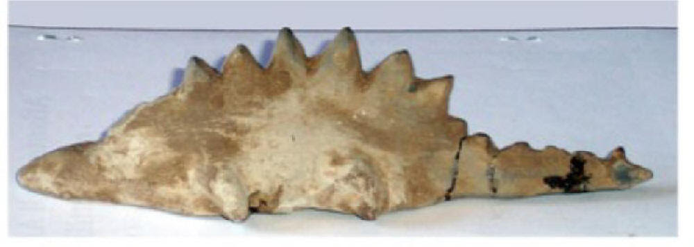 DINOSAUR CARVING RELIC OF ANCIENT ITALY