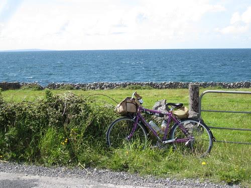 Sweetpea and the Irish Atlantic coast
