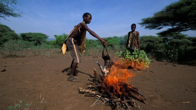 Control of fire was a major step in human history (Credit: Ariadne Van Zandbergen/Alamy)