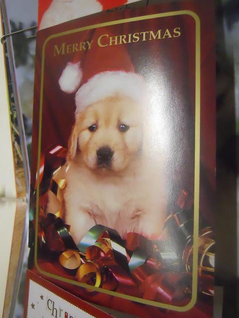 Christmas 2010 (33)