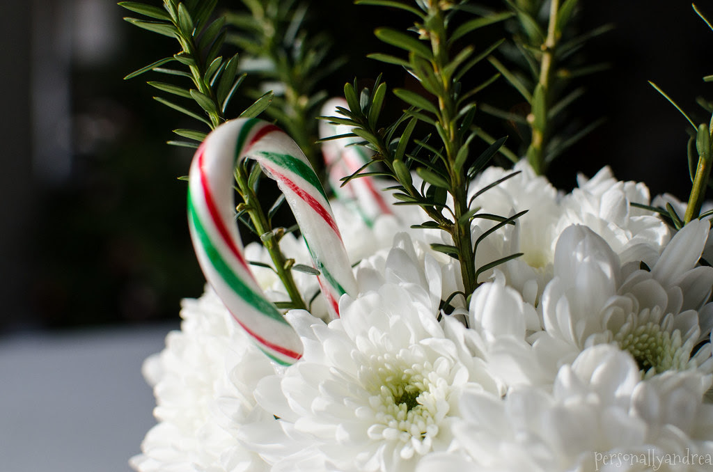 Christmas Carnation & Candy Cane Centerpiece | personallyandrea.com
