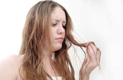 capelli secchi e sfibrati rimedi naturali - Maschere per Capelli Fai da Te My personaltrainer it