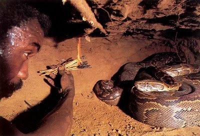 How_to_catch_Anaconda_4