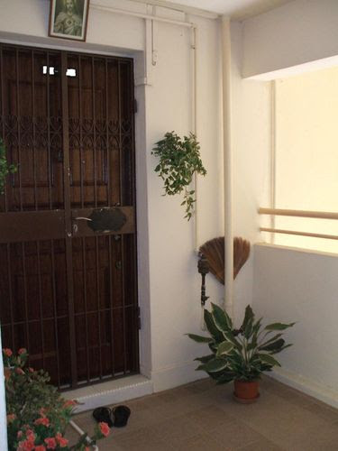 Main Door n Gate