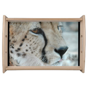 Cheetah Cat Serving Platters