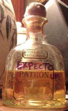 Expecto Patronum- Harry Potter Funny ! WIN