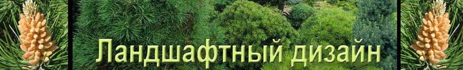 Design of garden - Ландшафтный дизайн