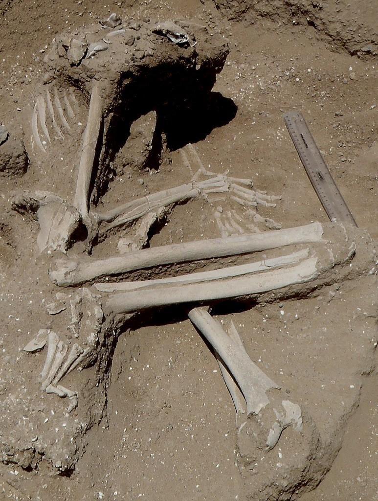 massacre seres humanos dez mil anos atras2