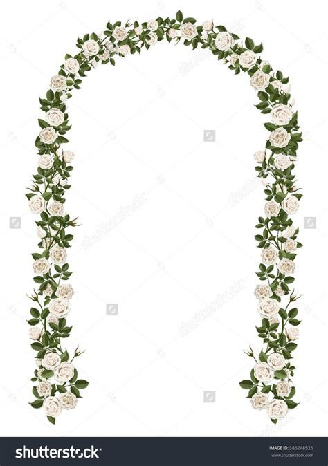 Arch Of White Climbing Roses. Floral Design. Wedding