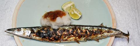 Sanma-no-shioyaki (Salt-grilled Pacific sanma) - teaser