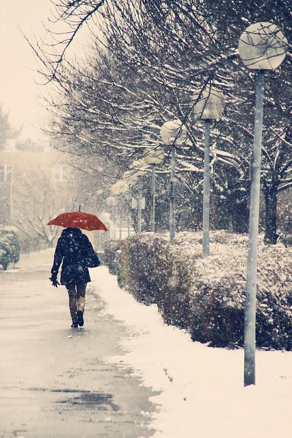 umbrella snow