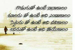 Funny Telugu Quotes With Images Telugu Funny Quotations In Telugu