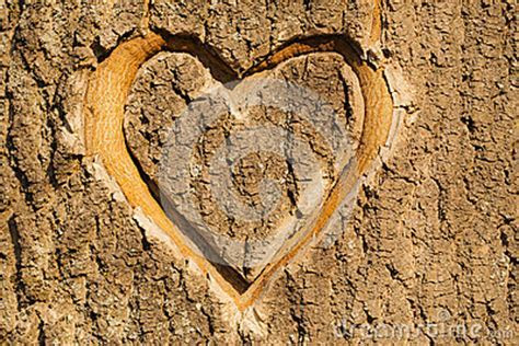 Heart Carved In The Bark. Stock Photos   Image: 30742923