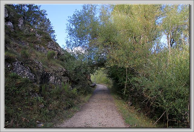 Roblón de Estalaya (Palencia) (4)