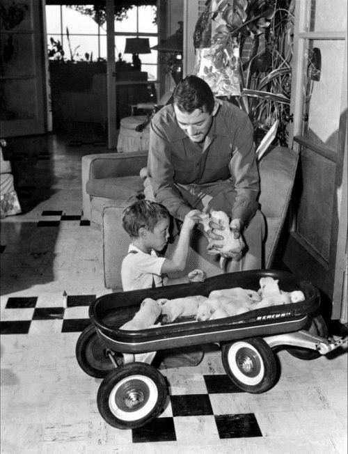 lucynic83:  Gregory Peck  As if he needed a kid and a wagon full of puppies to be more adorable!