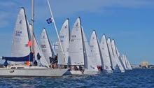 J/70s sailing off Tampa