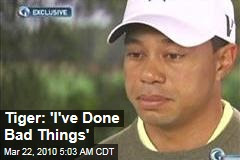 http://img1.newser.com/square-image/83860-20110331202242/tiger-ive-done-bad-things.jpeg