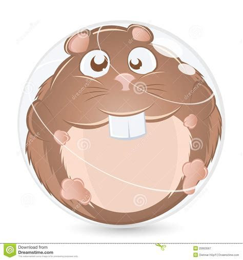 Fat Hamster stock illustration. Image of fluffy, cute   25953567