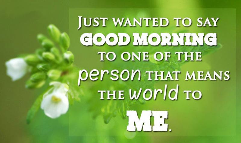 Good Morning Messages For Girlfriend Morning Wishes Wishesmsg