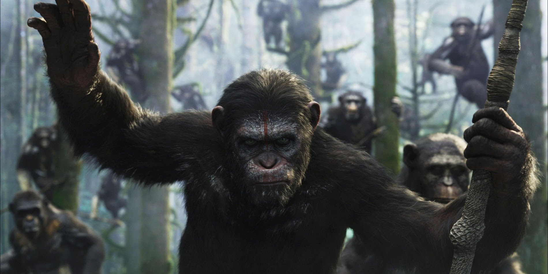 Tv And Movie News War For The Planet Of The Apes Director Already