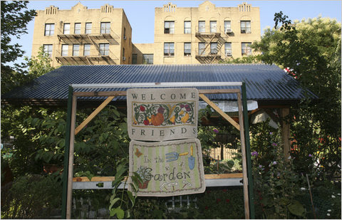 Tremont Community Garden in the Bronx in 2008.