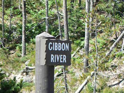 gibbon river.jpg
