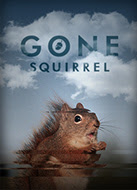 Gone Squirrel