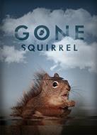 Gone Squirrel