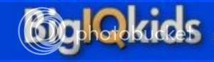Big IQ Title Banner