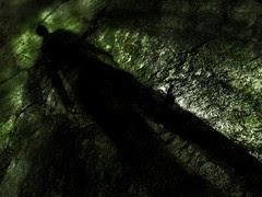 Dark Shadow by ski 9