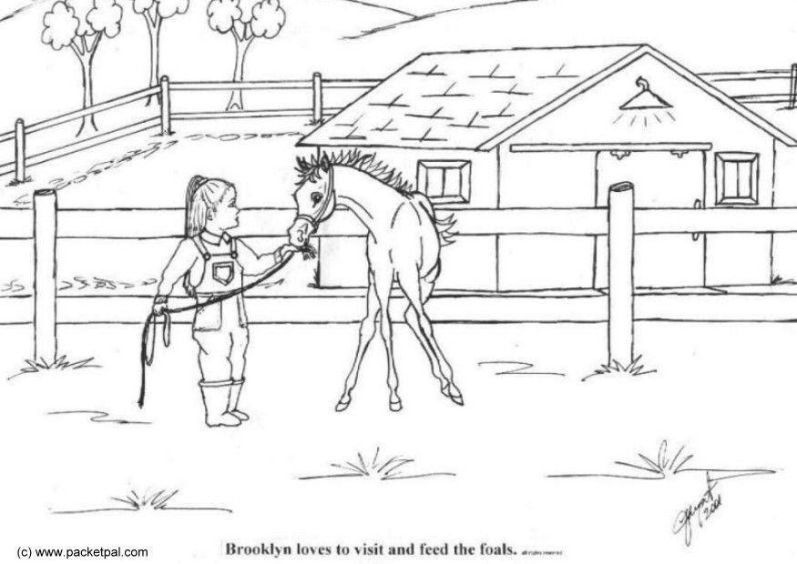 ausmalbilder kostenlos pferde mit fohlen und haus  pferd