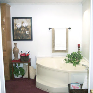 Bathroom Remodeling on View Topic   Bathroom Remodel Arrives