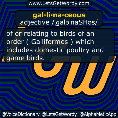 gallinaceous 11/20/2016 GFX Definition