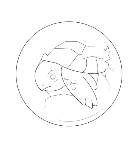 Dibujo De Bebé Tortuga Dentro Del Huevo Para Colorear Dibujos Para