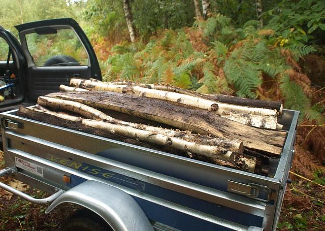 DSC_4533 Trailer load of logs
