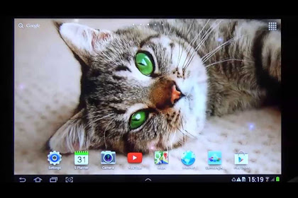 3d Cute Cat Wallpaper Apk